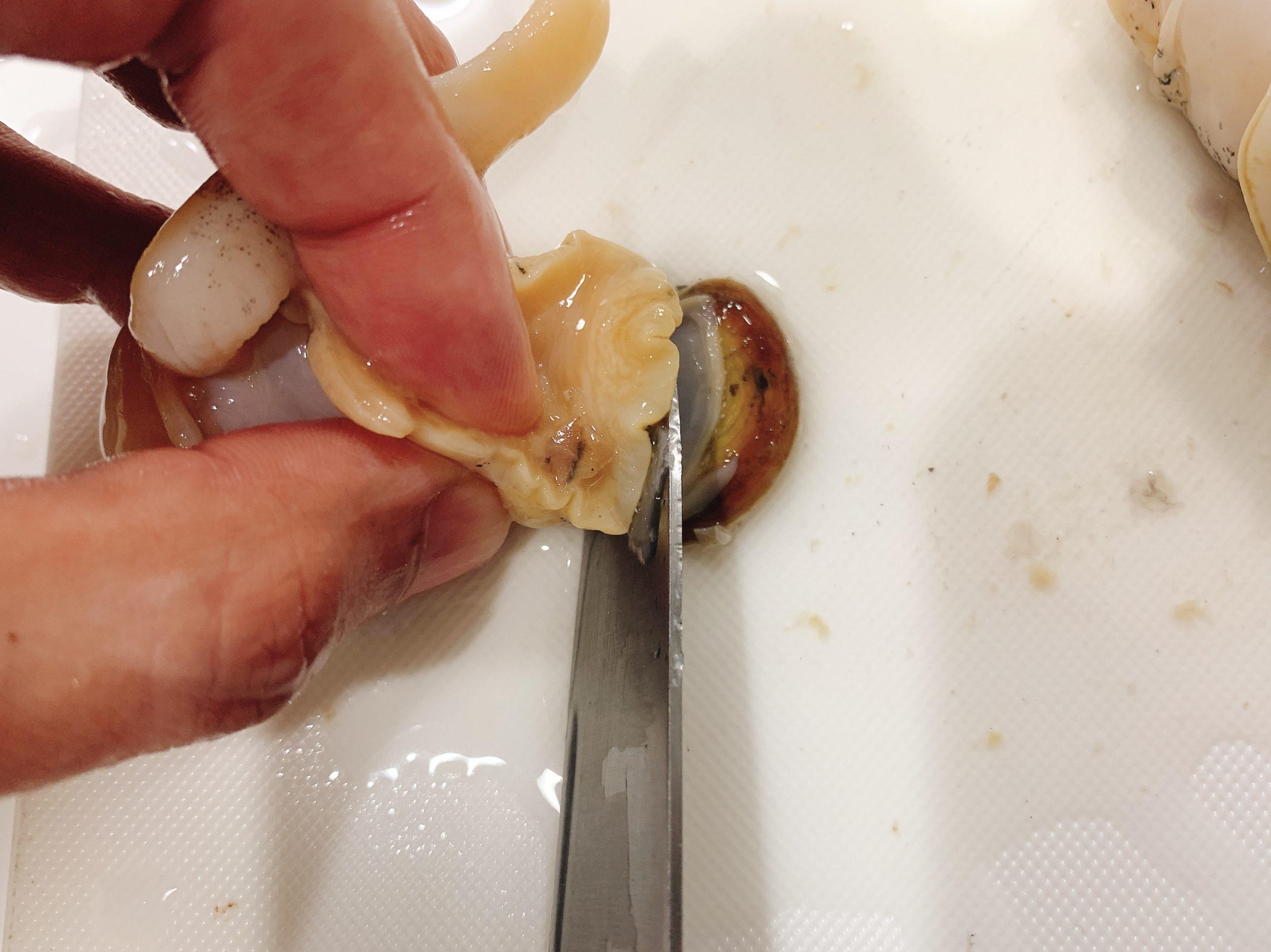 白バイ貝 捌き方