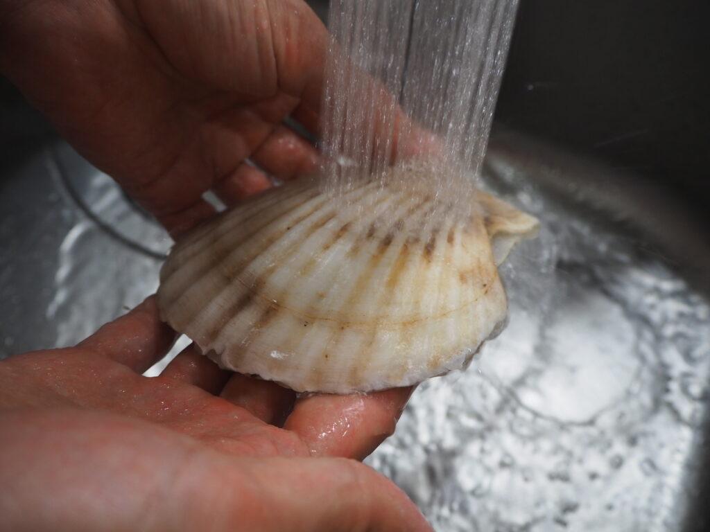 ホタテ 水洗い