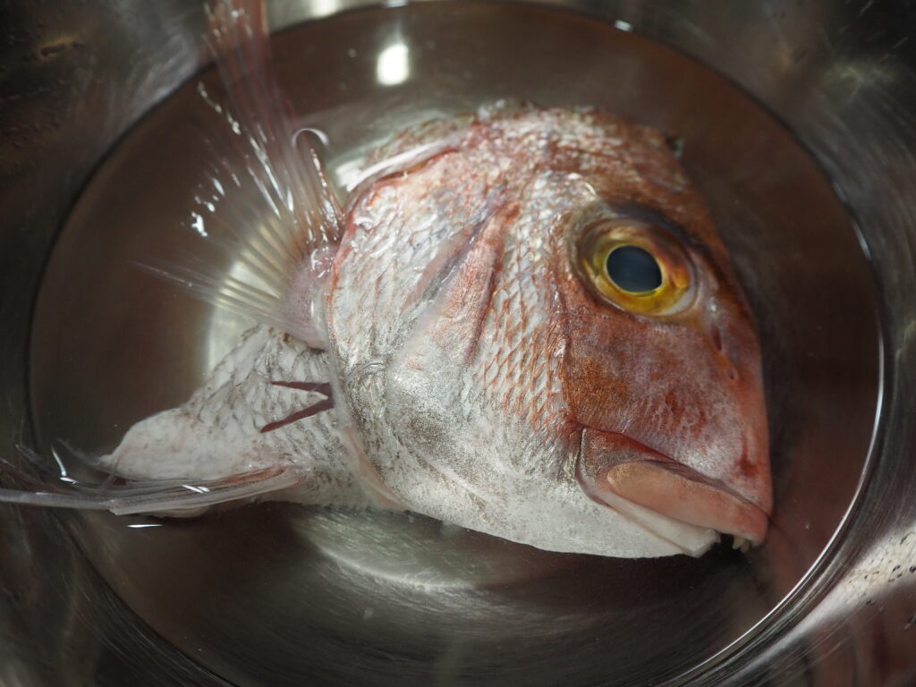 鯛アラ 塩加減
